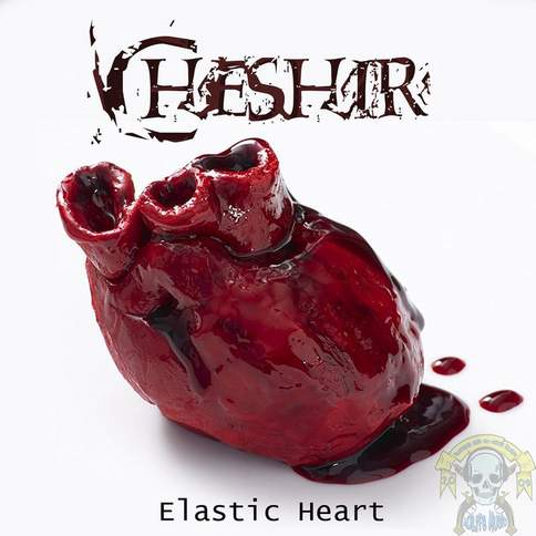 Elastic Heart - Sia (cover) Chris Brenner