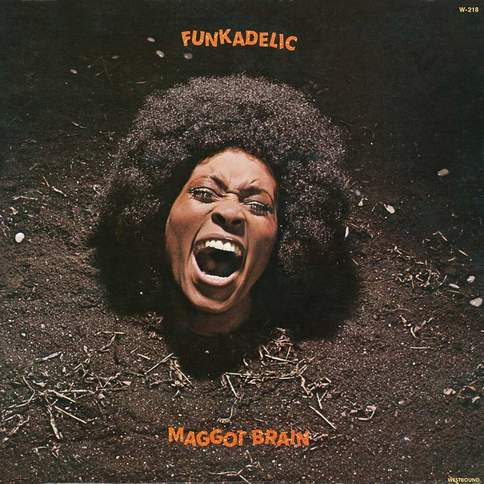 Mommy, What's A Funkadelic? Funkadelic