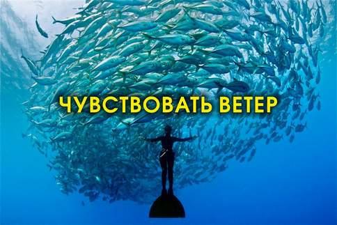 скорпионс текст песни ветер перемен на русском
